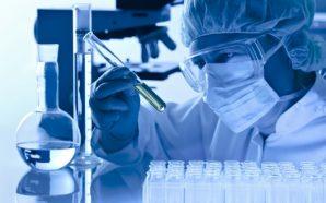Científicos españoles logran un avance 'clave' en la investigación de…