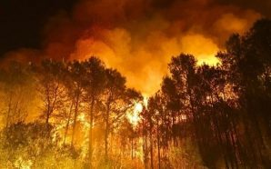 España en riesgo extremo de incendios forestales