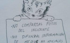 Twitter recurre a 'los gatitos' en protesta por la difusión…