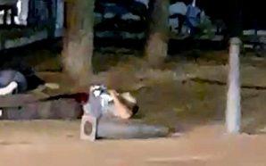 Un segundo atentado en Cambrils deja varios heridos y cinco…