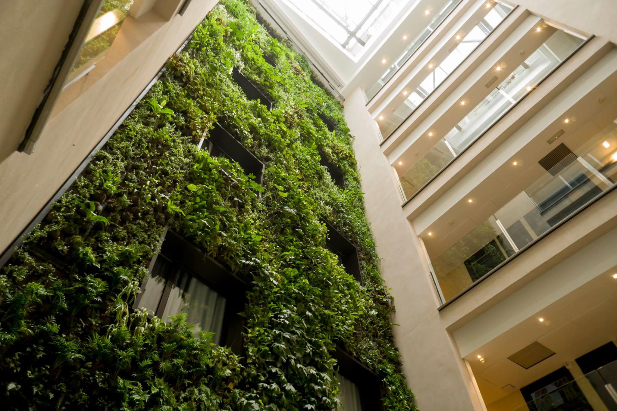 Verdtical, primer fabricante mundial de jardines verticales