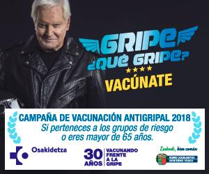 300x250_gripe2018_el_cs